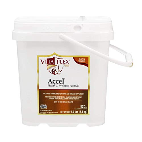 Foundation Pellets - Accel Vita Flex Health and Wellness Pellets for Horses. One-Step Vitamin-Mineral Supplement for a Strong Nutritional Foundation. 5 LBS