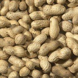 11.3KG (25lb) MALTBYS STORES PEANUTS IN SHELLS MONKEY NUTS WILD BIRD FOOD