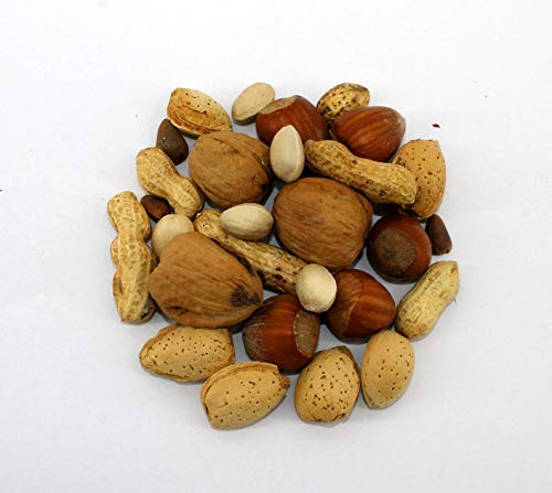 Sweet Harvest Nut Mix Treat, 4.0 Oz Bag - Real Nuts for Birds - Cockatiels, Cockatoos, Parrots, Macaws, Conures, African Grays, Amazons