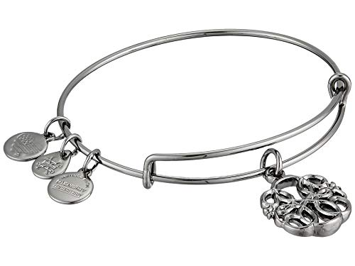 Alex and Ani Women's Passth of Life IV Bangle Midnight Silver Bracelet, Midnight Silver, Expandable