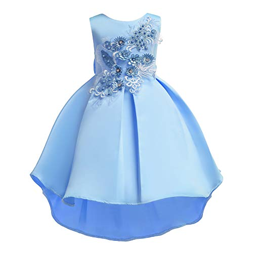 Girl Princess Flower Dress Kids Lace Wedding Party Bridesmaid Dresses (5-6 Years, Blue1)