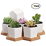 Succulent Planter, HBlife 2.75 Inch Succulent Plant Pots, Set of 7 White Ceramic Hexagon Succulent Cactus Planter Pots with Bamboo Tray(Plants NOT Included)
