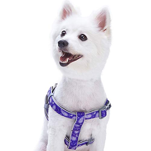 Blueberry Pet 5 Colors Soft & Comfy Step-in Paisley Flower Print Dog Harness, Chest Girth 16.5 - 21.5, Violet, Small, Adjustable Harnesses for Dogs