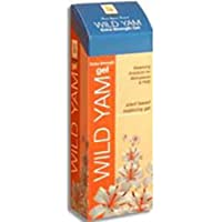 At Last Naturals Wild Yam Extra Strength Gel 2 Oz