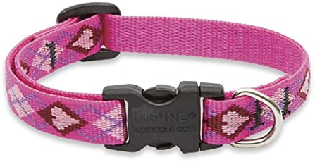 Lupine 1/2 Inch Puppy Love Adjustable Dog Collar for Small Dogs