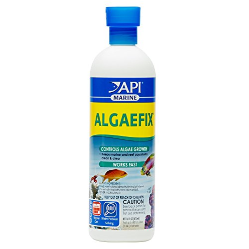 api-algaefix-marine-water-conditioner-16-oz