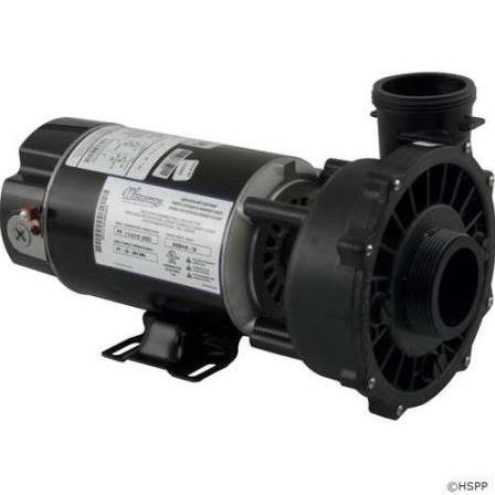 Waterway Plastics 3420410-1A 1 hp 115V 2-Speed Spa Pump 2
