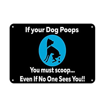 If Your Dog Poops You Must Scoop Even If No One Sees You