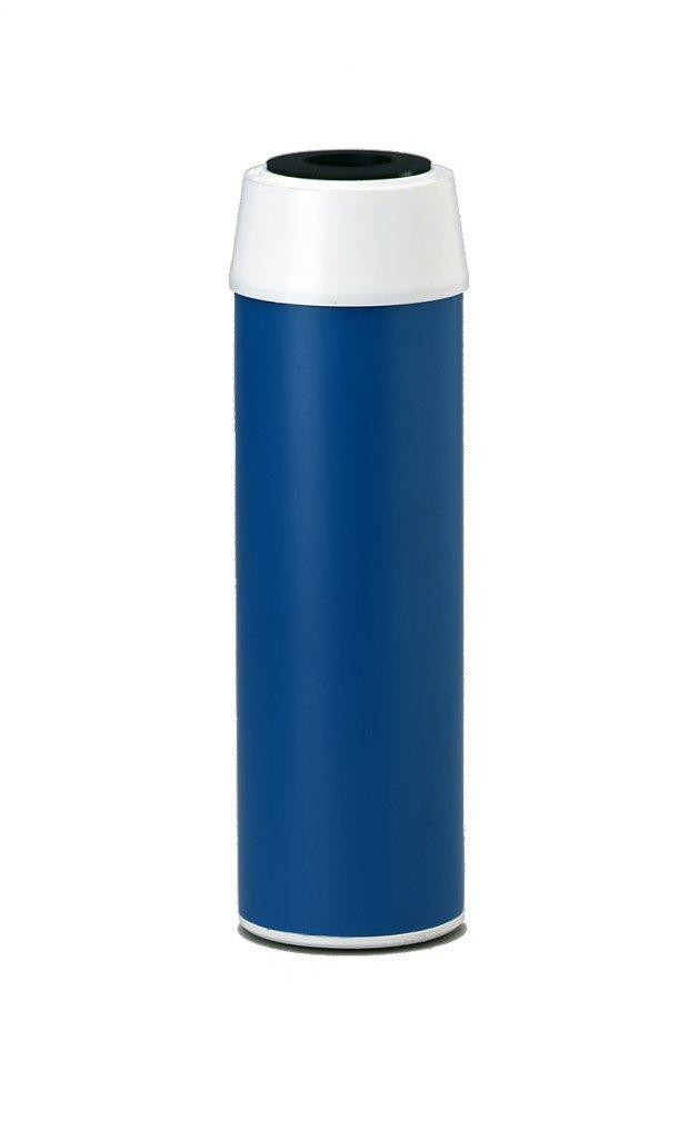Everpure EV910811 CGT-10 20 Micron 10-Inch GAC Filter