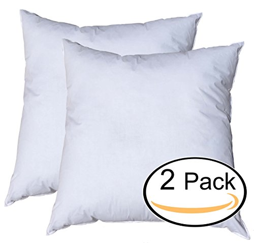 Pillowflex Premium Polyester Filled Pillow Form Inserts - Machine Washable - European Square - Made In USA (27x27 Pack of 2) - European Square Pillow Shams