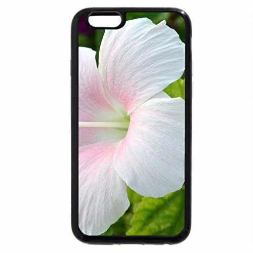iPhone 6S / iPhone 6 Case (Black) The Blushing Hibiscus