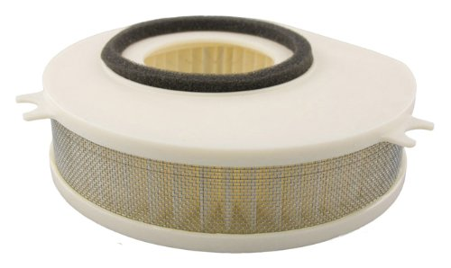 Hiflofiltro HFA4913 Premium OE Replacement Air Filter (V Yamaha Star 1100 Custom)