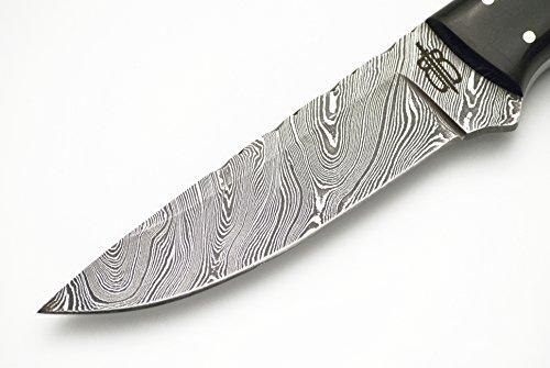 Buck n Bear Custom Handmade Spear Hunting Knife w/Buffalo & Walnut Wood
