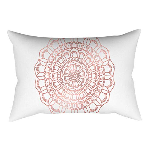 AOJIAN Home Decor Rose Gold Pink Square Decorative Cushion Cover Pillow Protectors Bolster Pillow Case Pillowslip,Throw Pillow Covers (Barn Pit Fire Pottery)