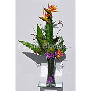 Artificial Orange Bird of Paradise and Purple Silk Hydrangea Vase Arrangement w/Contorted Willow and Foliage