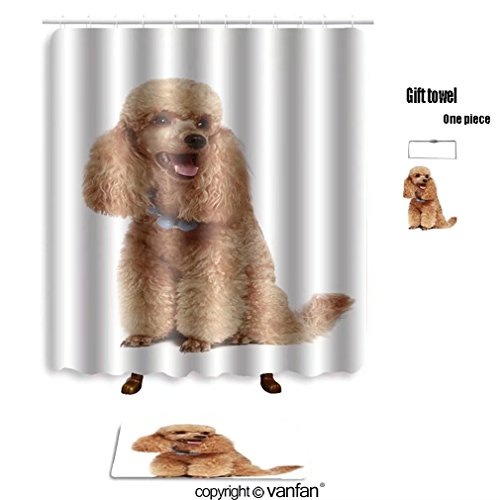 Cheap Vanfan Bath Sets With Polyester Rugs And Shower Curtain Apricot Poodle Puppy Isolated On White