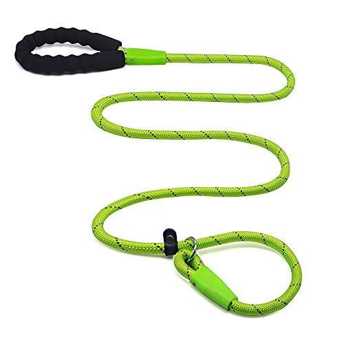 Wellbro Slip Lead Dog Leash, Reflective Nylon Rope Leash, 5 Feet Colorful Slip Training Lead with Soft Handle, Easy to Slip On/Off, For Medium and Large Dogs (Green)