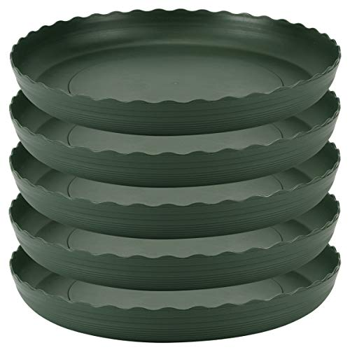 Plant Saucer 10 inch