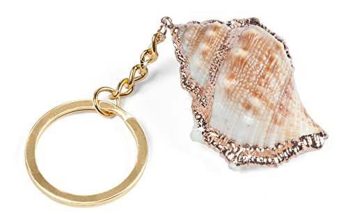Price comparison product image The Paragon Real Sea Shell Key Chain - Genuine Unique Ocean Seashell Key Ring; Gold Painted Accents; Beautiful Natural Shell Pendant; Key Keeper Organizer