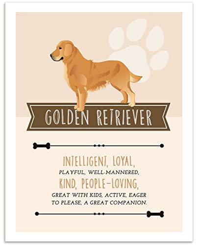 (Golden Retriever Dog Wall Art - 11x14 Unframed Decor Print - Makes a Great Gift Under $15 for Dog & Pet Animal Lovers)