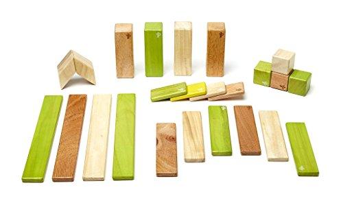 24 Piece Tegu Magnetic Wooden Block Set, Jungle