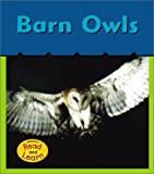 Barn Owls, Patricia Whitehouse, 1403406243