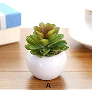 Windse Mini Potted Artificial Green Succulent Plants Bonsai Set Fake Flower Vase Decorative Flower Home Balcony Decoration 116