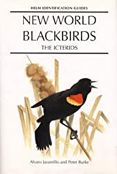 New World Blackbirds The Icterids