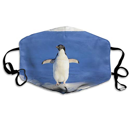 (Iceberg Penguin Blue Water Face Mouth Mask Unisex Fashion Breathable Anti-Dust Polyester Healthy Masks)