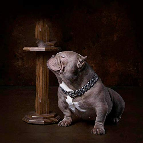 Luxury Dog Choke Collar Chain/Slip Martingale P Chain/Heavy Duty Stainless Steel 32mm Curb Chain/Best for Small Medium Large Breeds - for Pit Bull Mastiff Bulldog Big Breeds,F by MUJING (Image #1)
