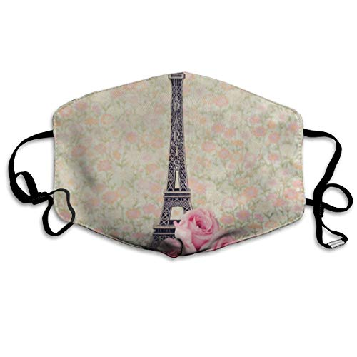 Custom Mouth Mask Anti-Dust Pink Rose Flower Paris Eiffel Tower Face Mask Breathable Mask With Adjustable Ear-loop Windproof And Warm]()