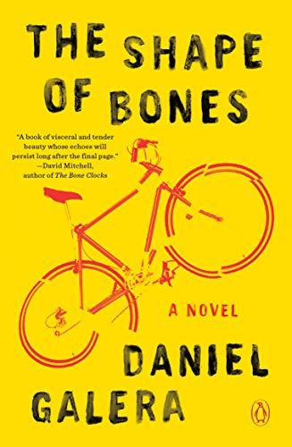 The Shape of Bones: A Novel