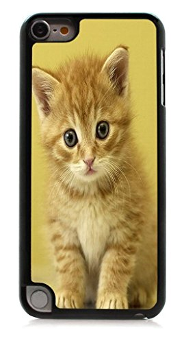 (HeartCase Hard Case for Apple itouch 5g 5th Generation ( Cat Cute ))