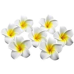 HugeStore 100 Pcs Diameter 2.4 Inch Artificial Frangipani Plumeria Hawaiian Flower Petals For Wedding Decor Decoration White 69