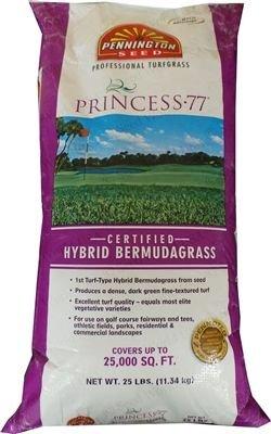 SeedRanch Princess 77 Bermuda Grass Seed - 25 Lb. by SeedRanch (Image #1)