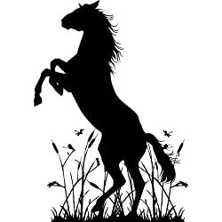 "Horse Upright In Grass wall decal sticker home décor 23"" x 33"""