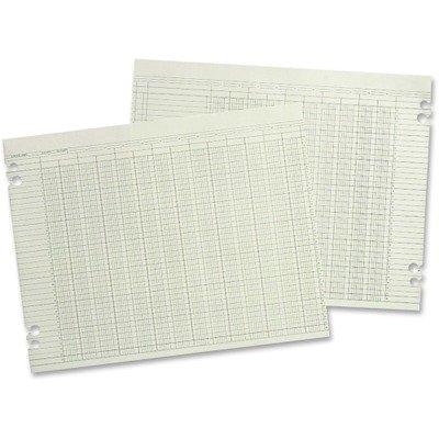 WLJG108 - Wilson Jones Accounting Sheets