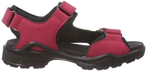 ECCO Biom Sandal - Sandalias Niñas Rosa (RASPBERRY/BLACK55450)