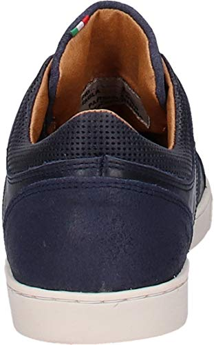 Turtle Enzo Leather D'oro Uomo Pantofola Trainer Blue qwFOCgfxW