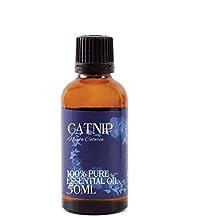 Mystic Moments | Catnip Essential Oil - 50ml - 100% Pure