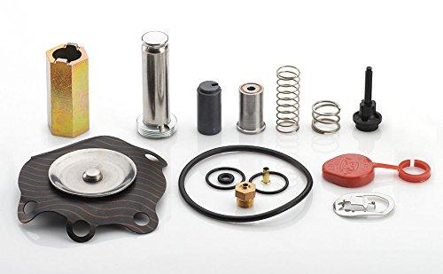 Rebuild kit Asco Series 8210