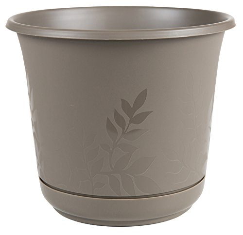 Bloem FP1260 814174022238 Freesia Planter with Etched Leaves, 12