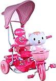 Trike - Tricycle - Ride-on ARTI Kotek New Pink Cat Kitty Children's bike