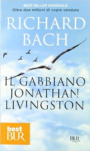 Risultati immagini per il gabbiano jonathan livingston libro