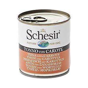 Schesir Comida Húmeda para Perro Atún con Zanahoria – Paquete de 16 x 285 gr – Total: 4560 gr
