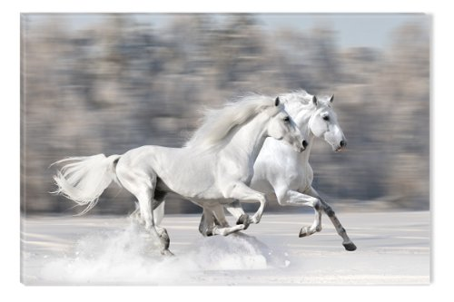 Startonight Wall Art Canvas Horses running fast, Horses USA Design for Home Decor, Dual View Surprise Artwork Modern Framed Ready to Hang Wall Art 23.62 X 35.43 Inch 100% Original Art (Halloween Decor Hobby Lobby)