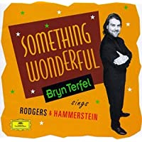 Something Wonderful - Bryn Terfel