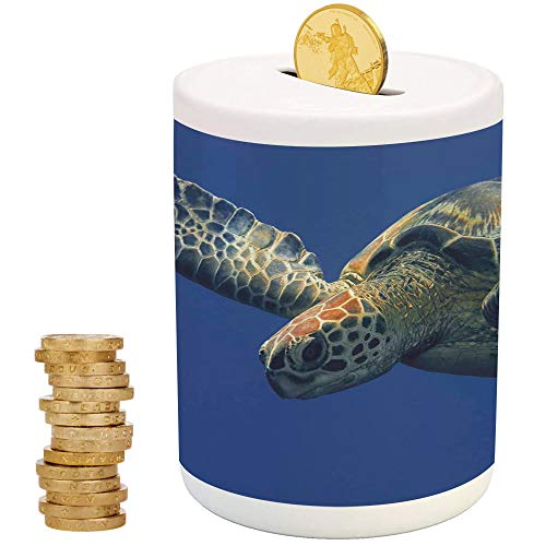 iPrint Turtle,Ceramic Piggy Bank for Girls,for Party Decor Girls Kid's Children Adults Birthday Gifts,Close Up Photo of Green Turtle at Sipadan Borneo Malaysia Cute Animal Under The Sea -