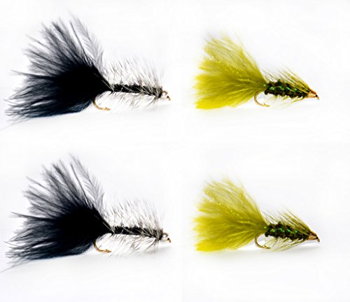 Dry Fly, Wet Fly, Nymph and Streamer Fly Lure Assotment + Fly Box, Woolly Bugger for Trout Fly Fishing Flies