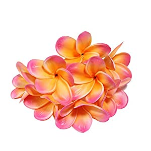 Calcifer 30 Pcs Real Touch PU Hawaii Hawaiian Plumeria Flower Frangipani Jasminum Grandiflorum Artificial Flowers Bridal Wedding Bouquet Home Garden Wedding Party Decoration (Apricot & Pink) 106